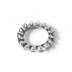 Rondelle Evantail à dentures extérieures Inox A2 diam: M6 DIN 6798-A